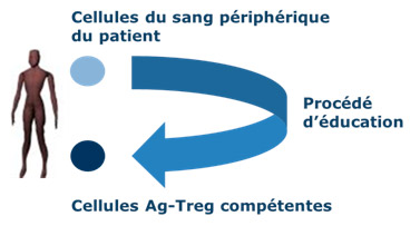 TCXELL process-2013